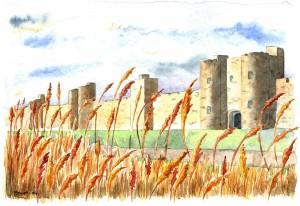 Cité de Grand palais , les remparts ,aujourd'hui disparus.